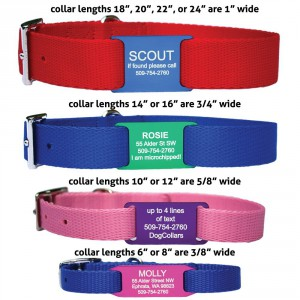 Nylon 4 Collar Sizes