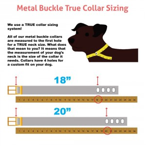 Metal Buckel True Collar Sizing