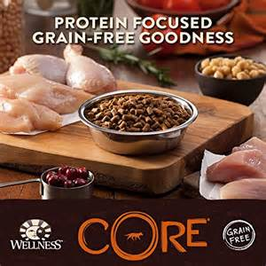Wellness CORE Grain Free Goodness