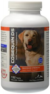 Nutramax Cosequin DS PLUS MSM Chewable Tablets