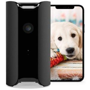 Canary Indoor Home Dog Camera