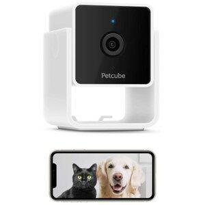 Petcube Dog Camera